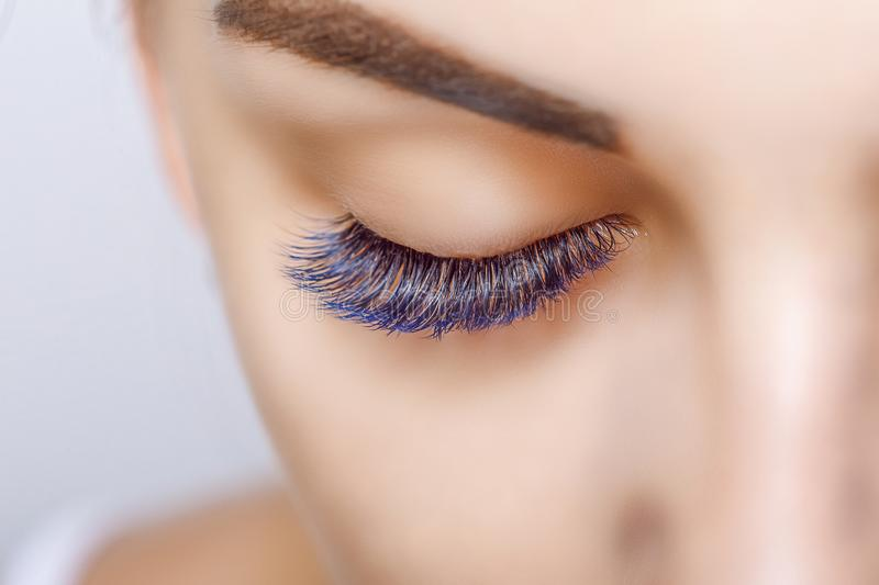 Eyelash Extension Procedure. Woman Eye with Long Blue Eyelashes. Ombre effect. Close up, selective focus. Eyelash Extension Procedure. Woman Eye with Long royalty free stock image