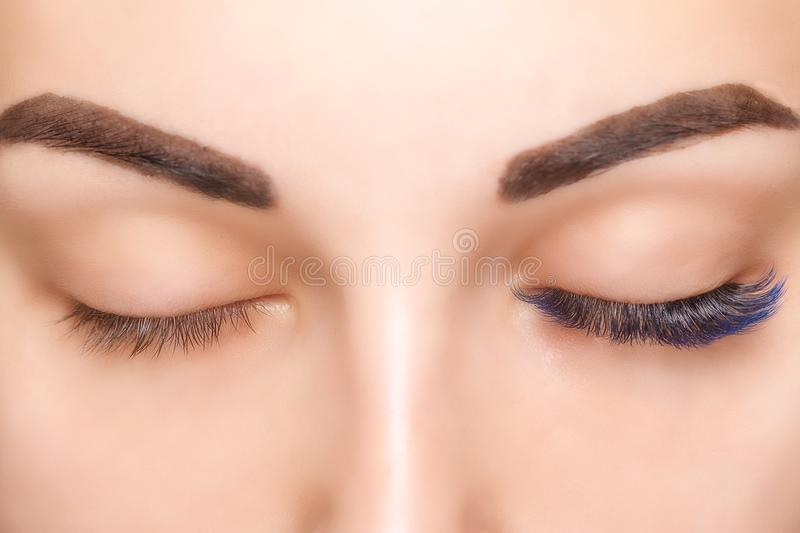 Eyelash Extension Procedure. Woman Eye with Long Blue Eyelashes. Ombre effect. Close up, selective focus. Eyelash Extension Procedure. Woman Eye with Long stock images