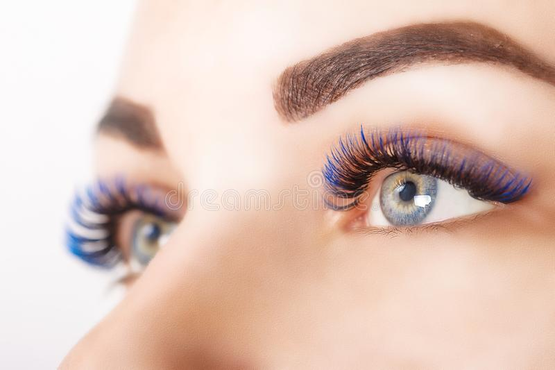 Eyelash Extension Procedure. Woman Eye with Long Blue Eyelashes. Ombre effect. Close up, selective focus. Eyelash Extension Procedure. Woman Eye with Long stock photo
