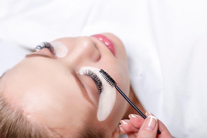 Eyelash Extension Procedure. Woman Eye with Long Eyelashes. Lashes, close up, selected focus. Eyelash Extension Procedure. Woman Eye with Long Eyelashes. Lashes stock images