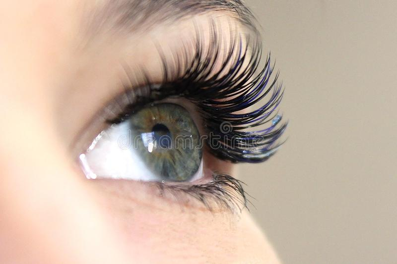 Beautiful Woman with long lashes in a beauty salon. Eyelash extension. Eyelash Extension Procedure. Woman Eye with Long false Eyelashes. Close up macro shot of stock photos