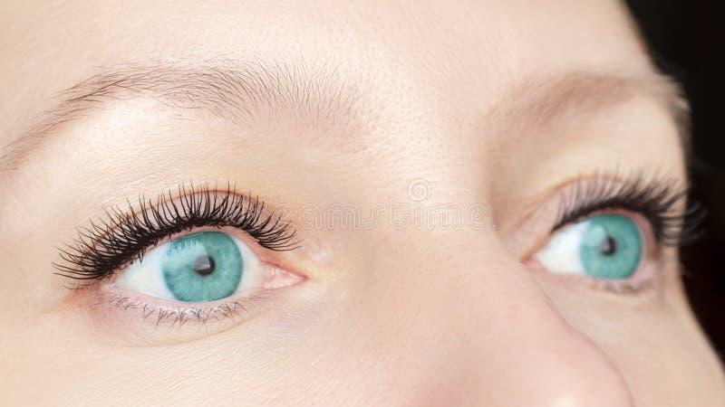 Eyelash extension procedure - woman fashion eyes with long false eyelashes close up, beauty, make up and visage concept royalty free stock image