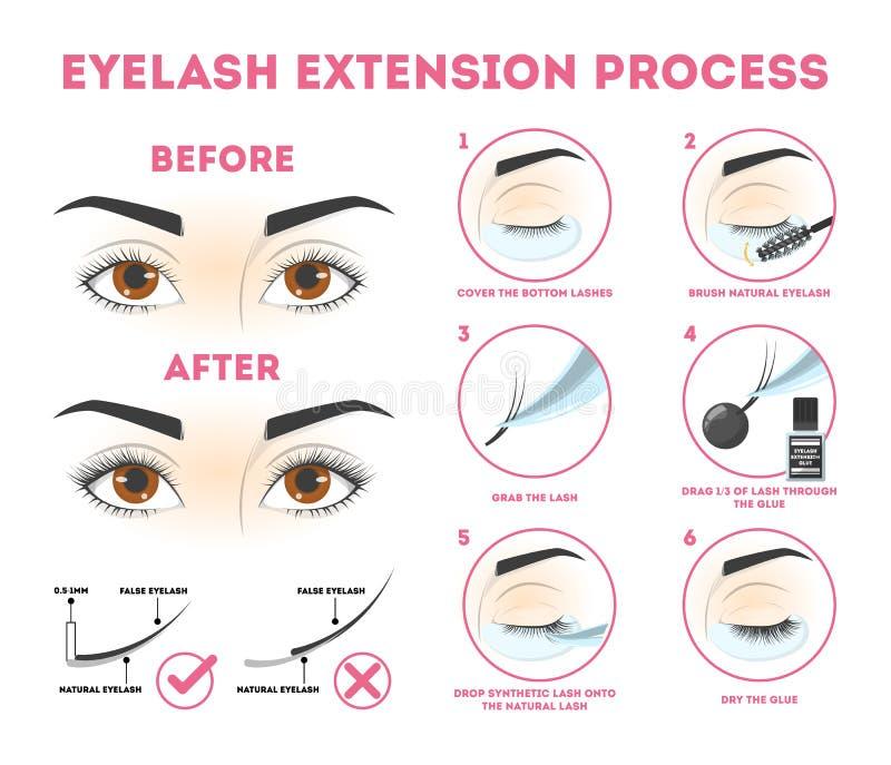 Οδηγός επέκτασης Eyelash για τη γυναίκα Infographic ?? ?? eyelashes ελεύθερη απεικόνιση δικαιώματος
