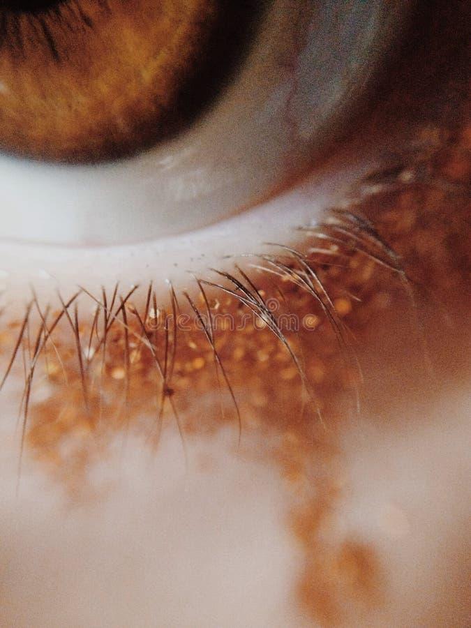 eyelashes immagini stock libere da diritti