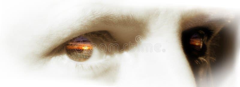 eyes заход солнца стоковое фото