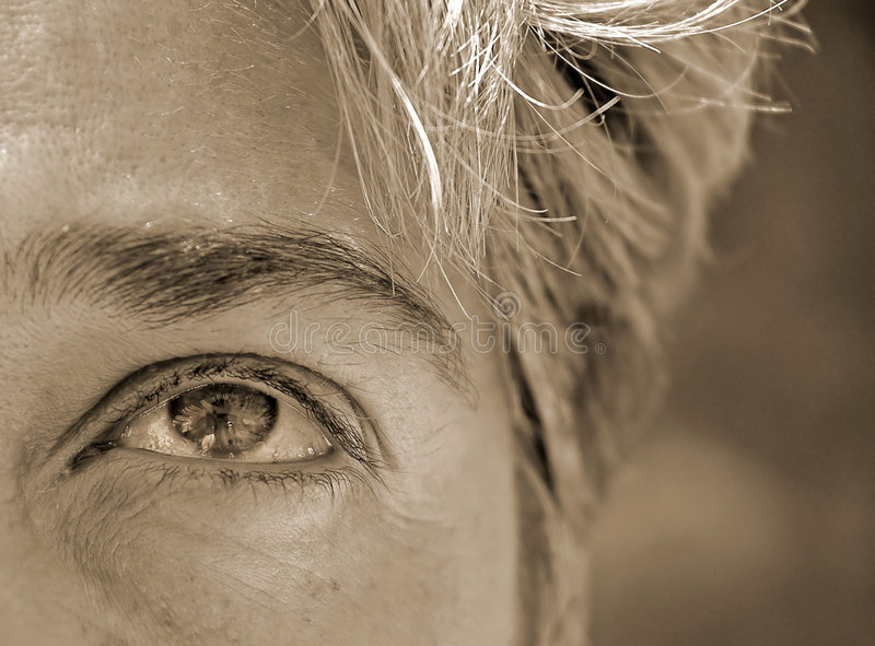 Download Eyes stock photo. Image of vision, adult, woman, focus, glimpse - 5646