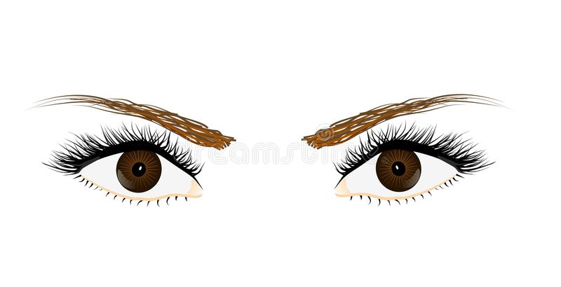Eyes Stock Photos