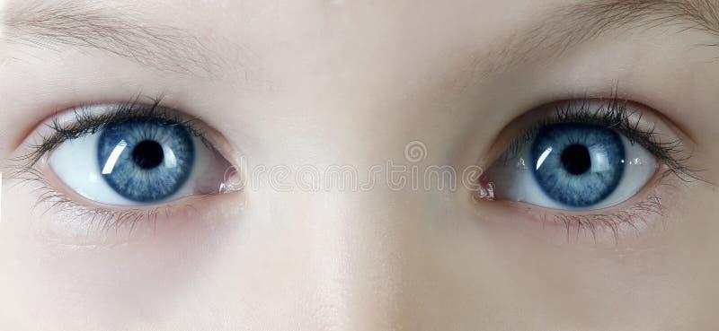 Eyes. Macro shot of children's blue eyes