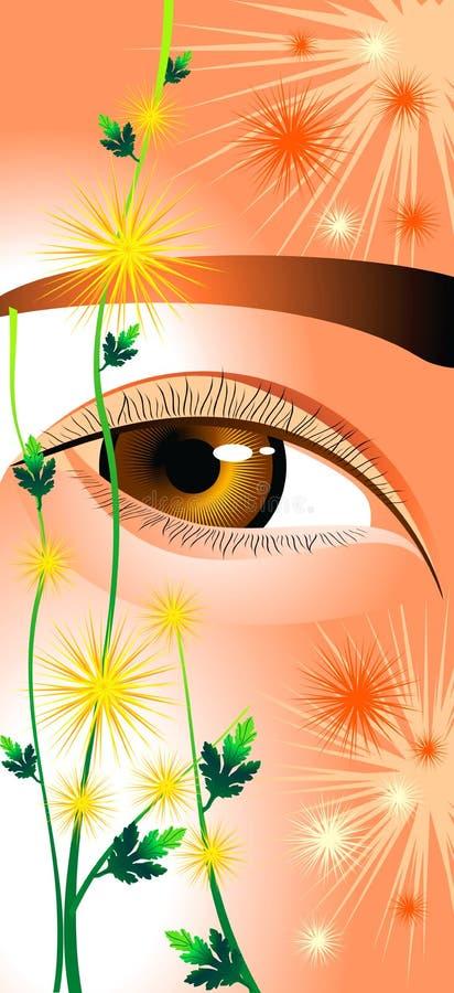 Eyes As Chrysanthemums Royalty Free Stock Photos