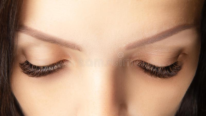 Eyes with beautiful long lashes closeup. Brown color eye lash extension, 3D or 4D volume stock photo
