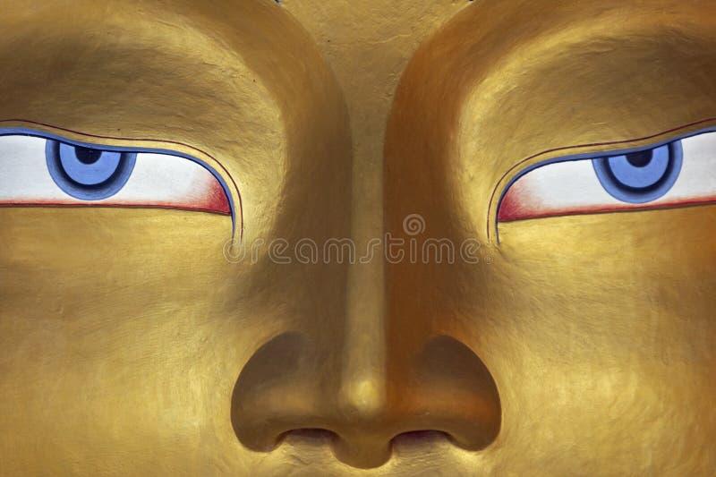 Eyes of a Buddha stock image
