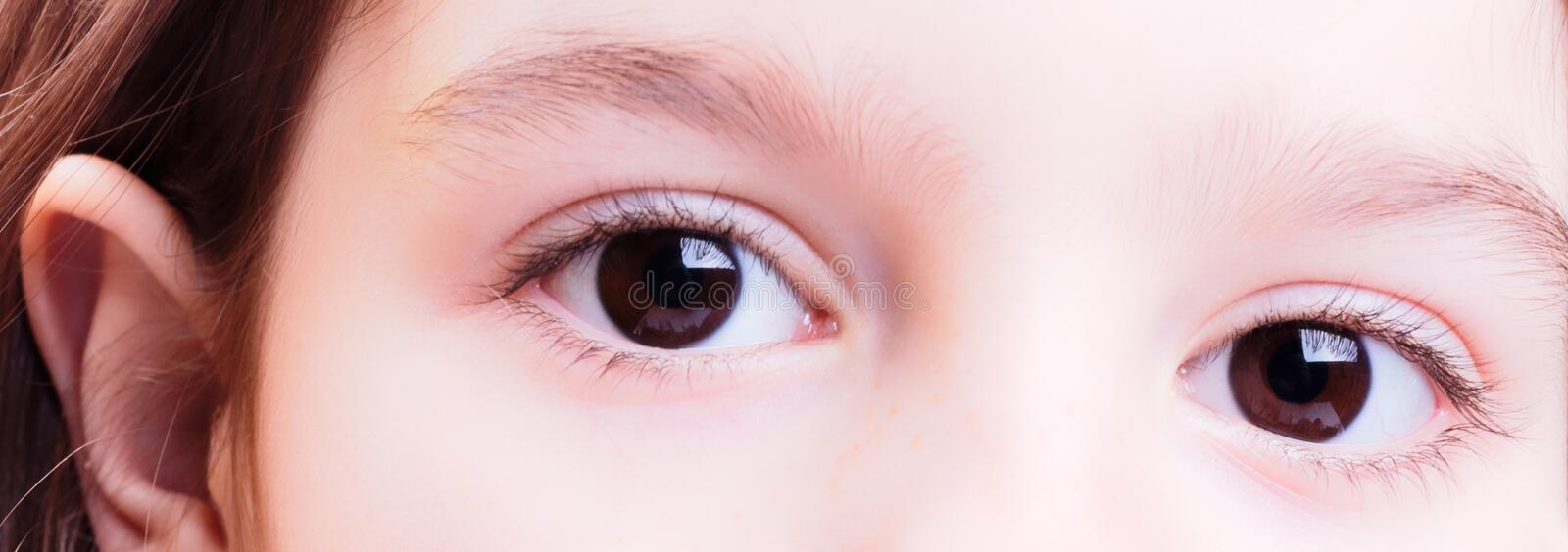 Eyes royalty free stock image