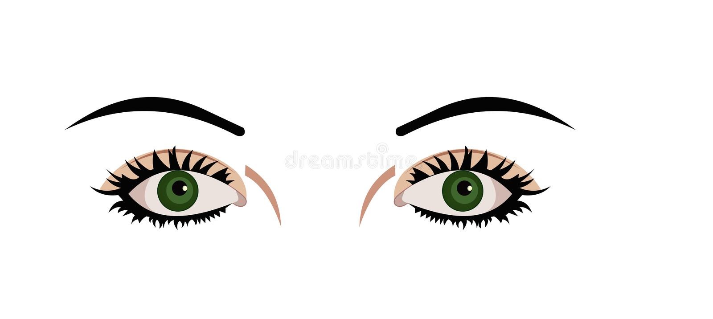 eyes den realistiska illustrationen royaltyfri illustrationer