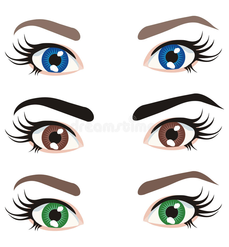 Download Eyes of different colors stock vector. Illustration of detail - 41449385