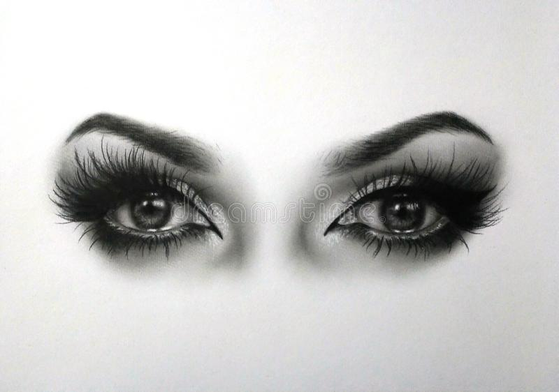 Eyes drawing. I made with oil on paper stock illustration