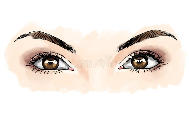 Eyes with eye shadows, close up view.  Vector fashion illustration vector illustration