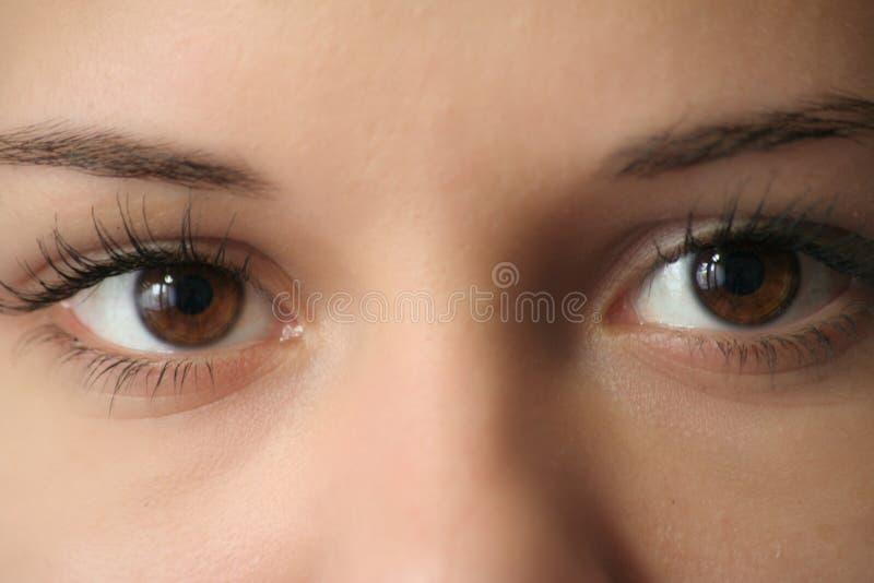 Eyes il primo piano fotografia stock libera da diritti