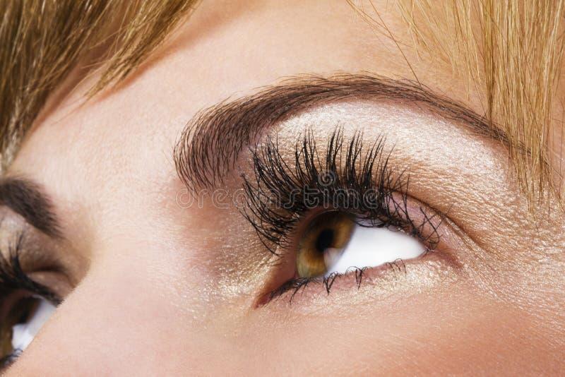 eyes kvinnan royaltyfri bild