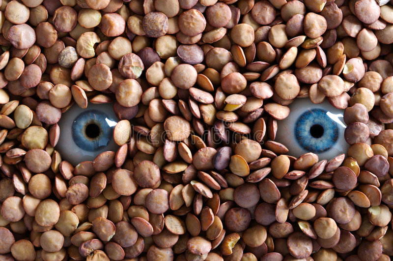 Download Eyes and lentils stock photo. Image of round, textured - 2815172