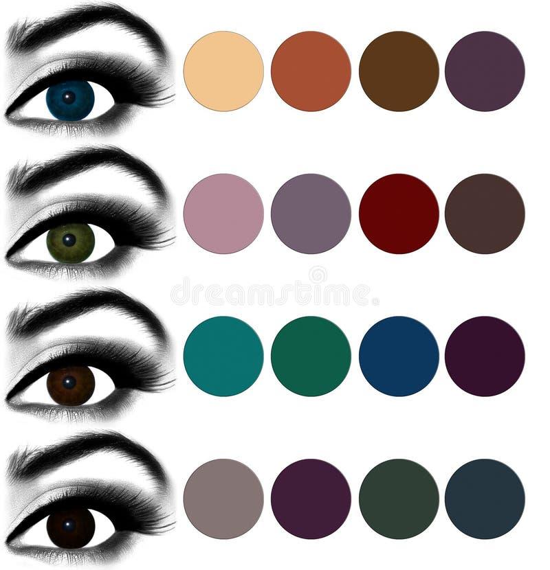 eyes makeup Matcha ögonskugga för att syna färg royaltyfri illustrationer