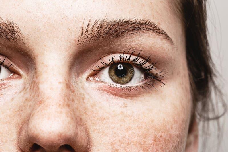 Eyes o retrato bonito novo da cara da mulher das sardas da mulher com pele saudável imagem de stock royalty free