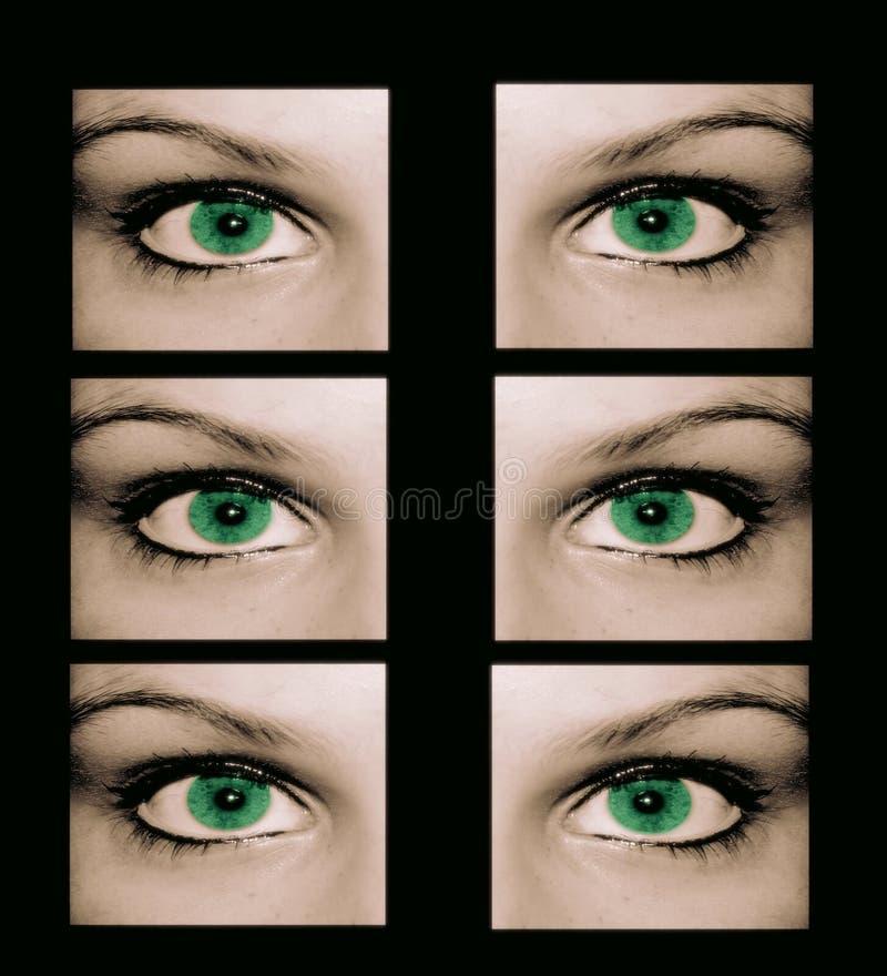 Download Eyes Säkert Konstigt För Nr. En Stock Illustrationer - Illustration av fönster, ögon: 518806