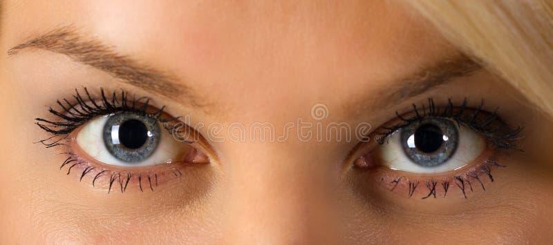 eyes s-kvinnan royaltyfri foto