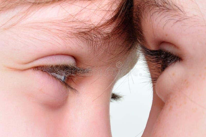 Download Eyes To Eyes Royalty Free Stock Image - Image: 23843696
