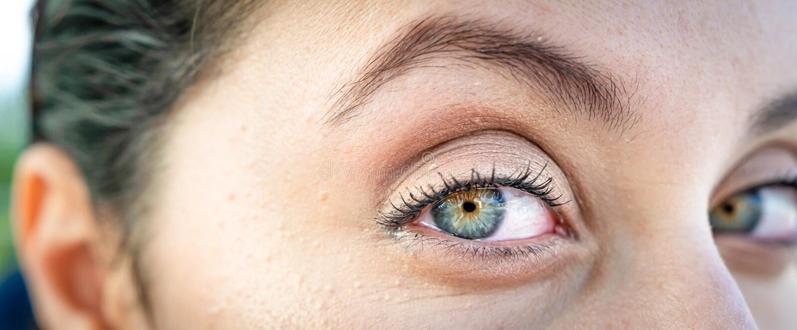 Eyes of tunisian girl. Panoramic macro image of beautiful  green female eyes and eyebrows. Middle eastern people face features with make up stock photography