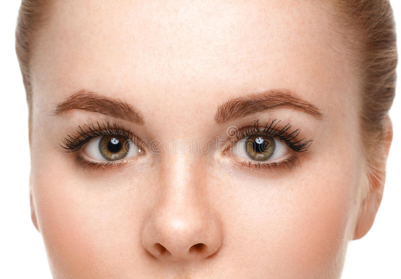 Eyes woman eyebrow eyes lashes. stock image