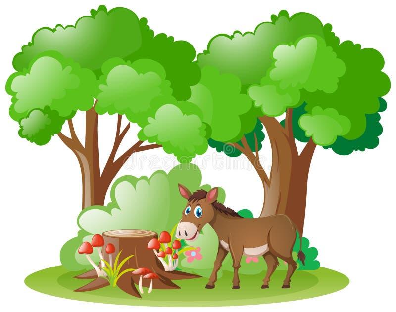 Ezel die in het bos leven royalty-vrije illustratie