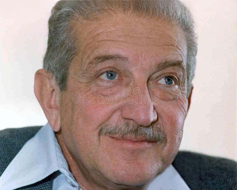 Ezer Weizman royaltyfri bild
