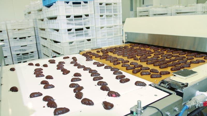 Fábrica de doces Carnes de chocolate que se encontram sobre o transportador imagens de stock royalty free