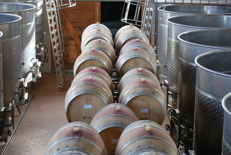 Fábrica de tratamento do vinho fotos de stock