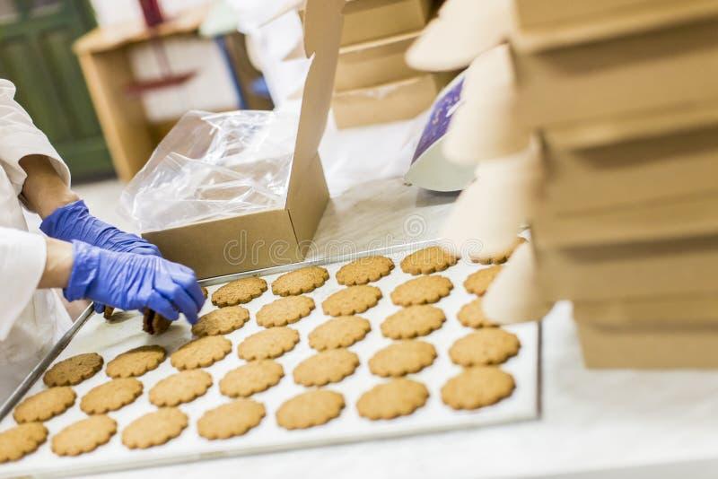 Fábrica dos biscoitos imagem de stock