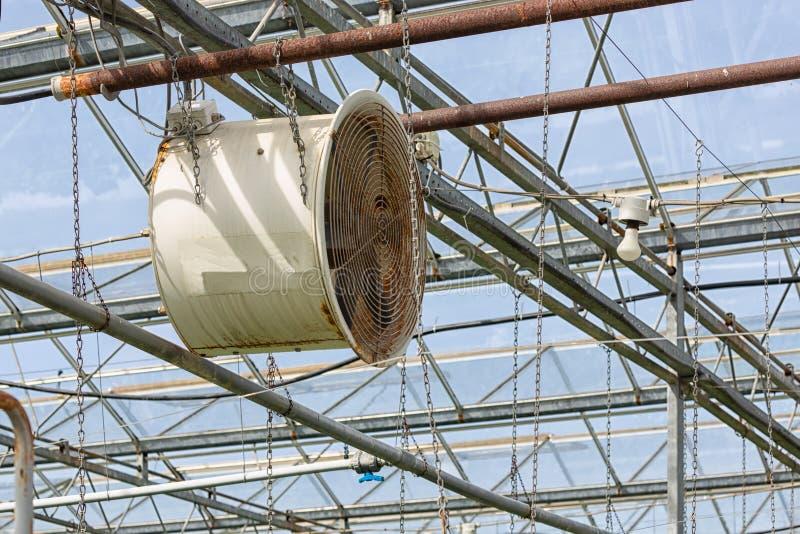 Fã bonde na estufa holandesa para o condicionamento de ar que cultiva vegetais fotos de stock