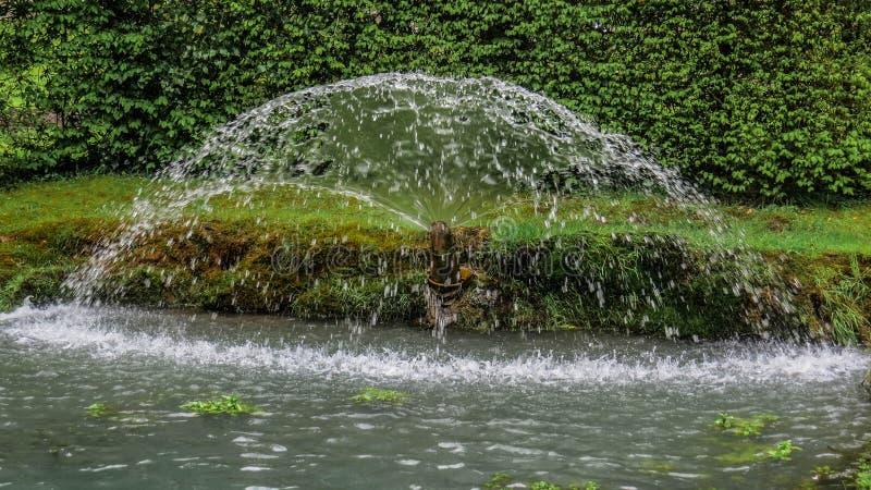 Fã da água fotografia de stock