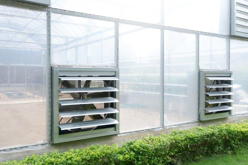Fã no berçário agrícola da casa verde fotografia de stock