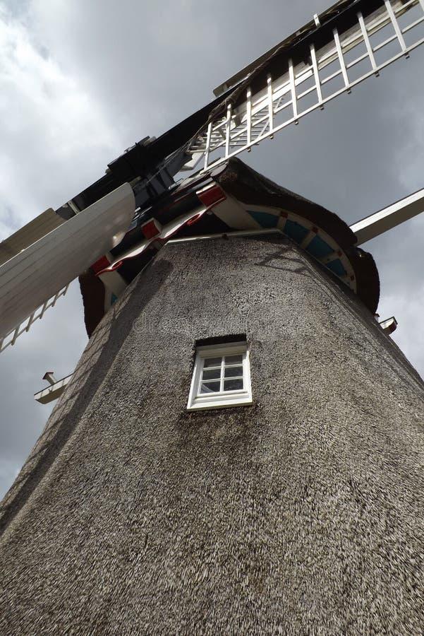 Fãs do moinho de vento do curso da Holanda fotografia de stock royalty free