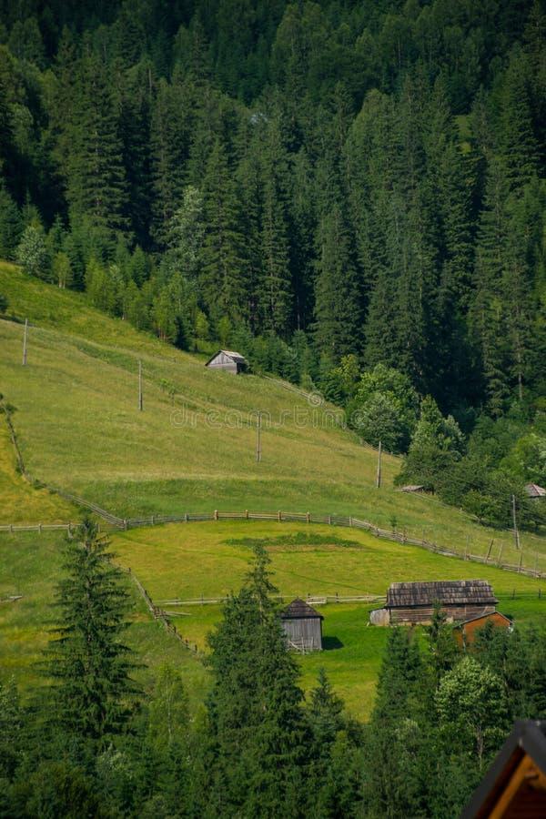 Fäktad trälantgård på en kulle royaltyfri foto