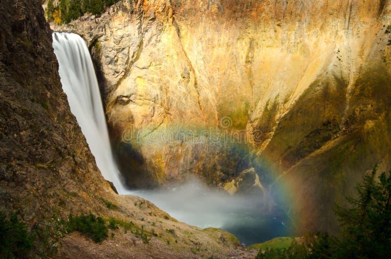 Fäll ned den Yellowstone nedgångar och regnbågen arkivfoton