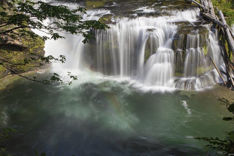 Fäll ned Lewis River Falls View royaltyfria bilder