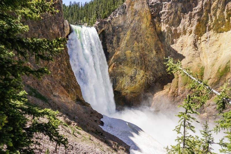 Fäll ned nedgångar, den Yellowstone nationalparken, Wyoming royaltyfri fotografi