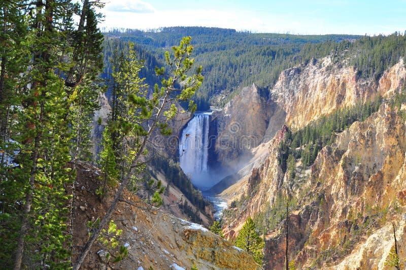 Fäll ned Yellowstone nedgångar på den Yellowstone nationalparken, Wyoming royaltyfri foto