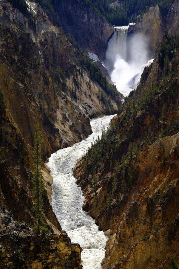 Fäll ned Yellowstone vattenfallnedgångar i kanjonnationalpark royaltyfri foto
