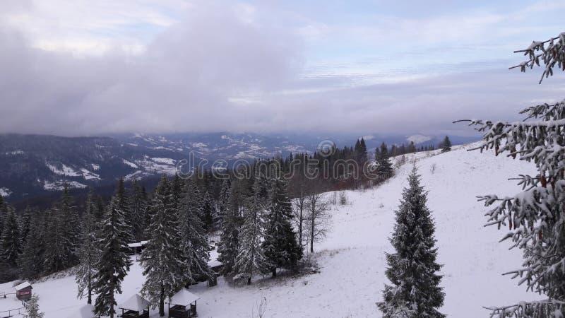 Fälla ned från ett berg Zahar Berkut fotografering för bildbyråer