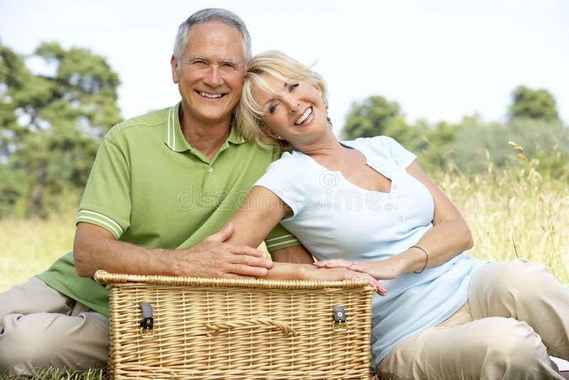 Fällige Paare, die Picknick in der Landschaft haben stockbild