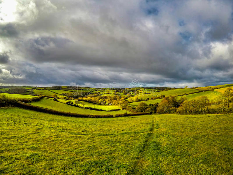 Fält av England royaltyfri foto