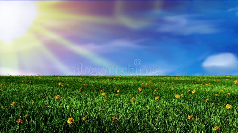 Fält av gräs och den soliga dagen vektor illustrationer