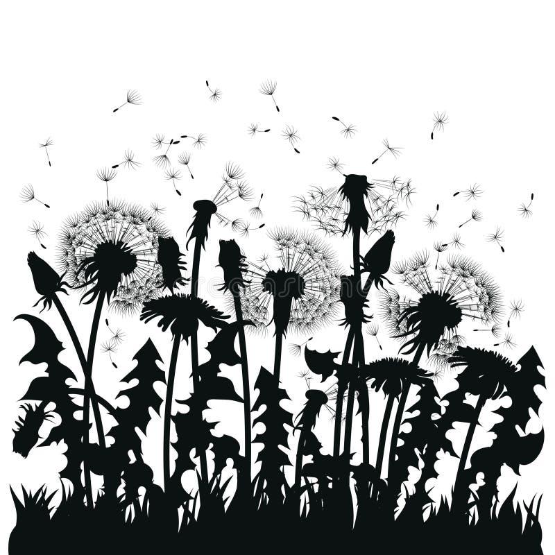 Fält av maskrosblommor Svarta konturer av sommarväxter på en vit bakgrund Översikten av en glänta med stock illustrationer